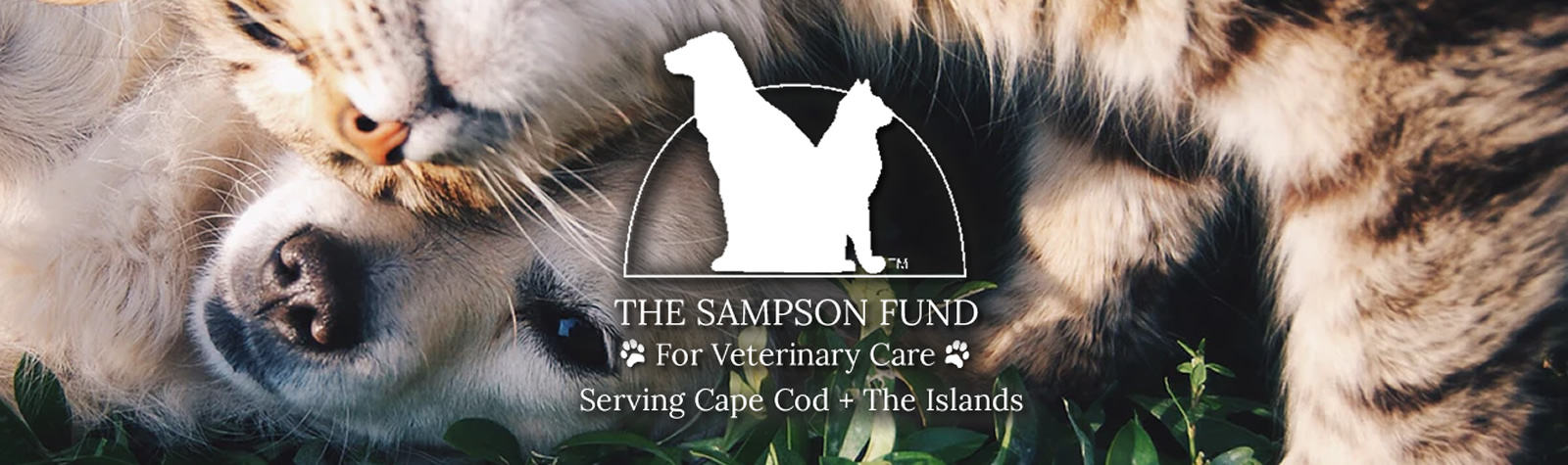 The Sampson Fund